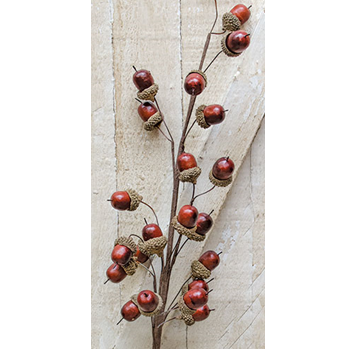 "Acorn Faux Resin Decorating 27"" Spray"