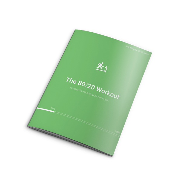 The 80/20 Workout - eBook