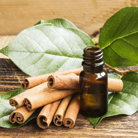 Cinnamon Leaf Essential Oil 10 ml
