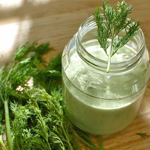 Oil - Dill Seed Essential Oil 10 Ml