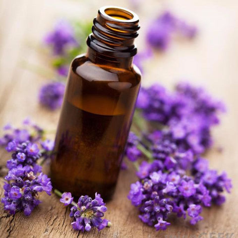 Oil - Lavender Essential Oil 10 Ml