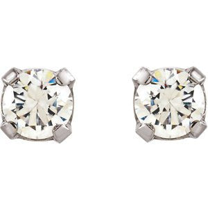 Stainless Steel Inverness Palladium Platecz Er Earrings - shopvistar