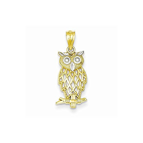 14k & Rhodium Owl Pendant, Best Quality Free Gift Box Satisfaction Guaranteed - shopvistar