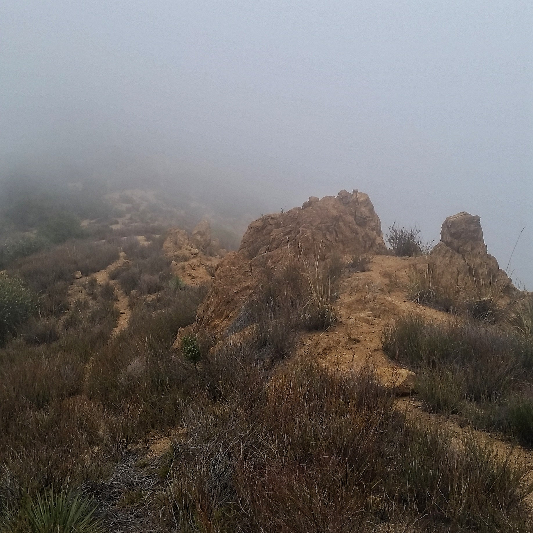 Mount Muir via Lone Tree Trail - Rubio Canyon | TRVRS Outdoors San Gabriel Mountains Angeles National Forest