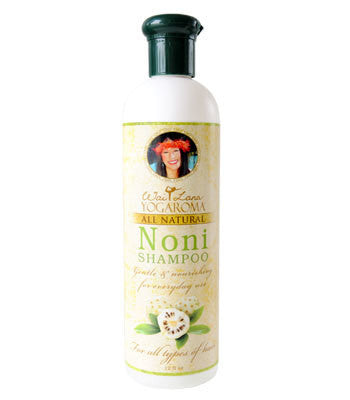 BULK DISCOUNT - Noni Shampoo - 1 case of 12 - FREE  Shipping