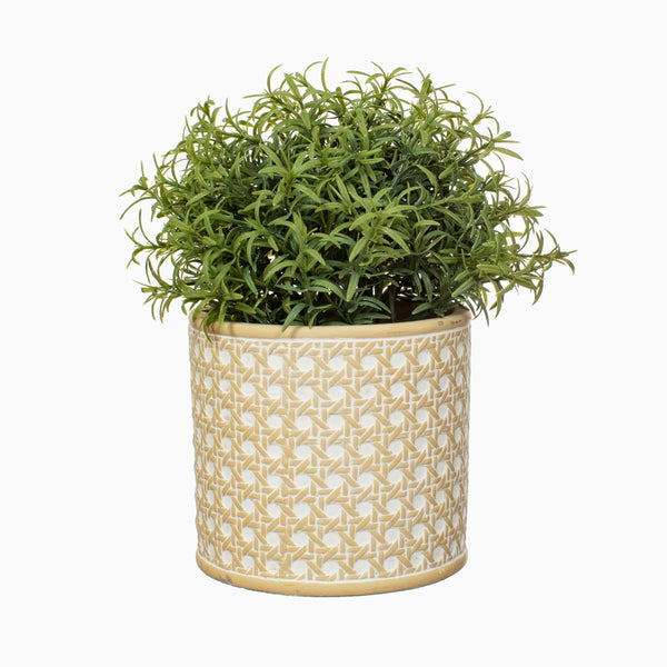 RATTAN WEAVE CONCRETE PLANTER - style my pad
