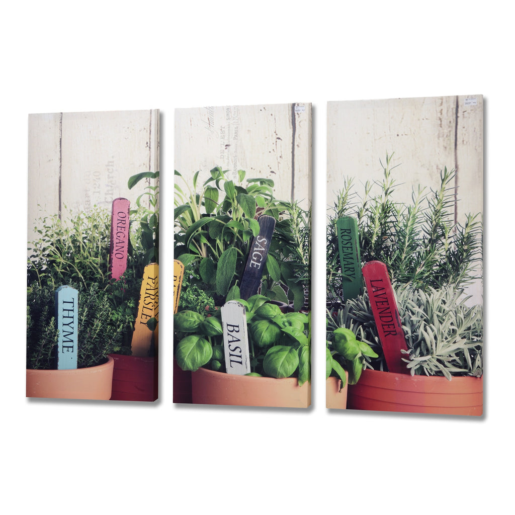 Large Herb Garden Wall Canvas - Stylemypad