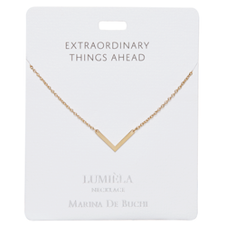 'Extraordinary Things Ahead' Gold Arrowhead Necklace