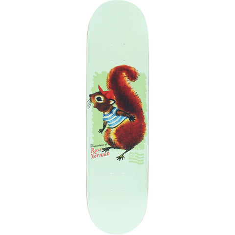 POLITIC NORMAN SQUIRREL 8.0""