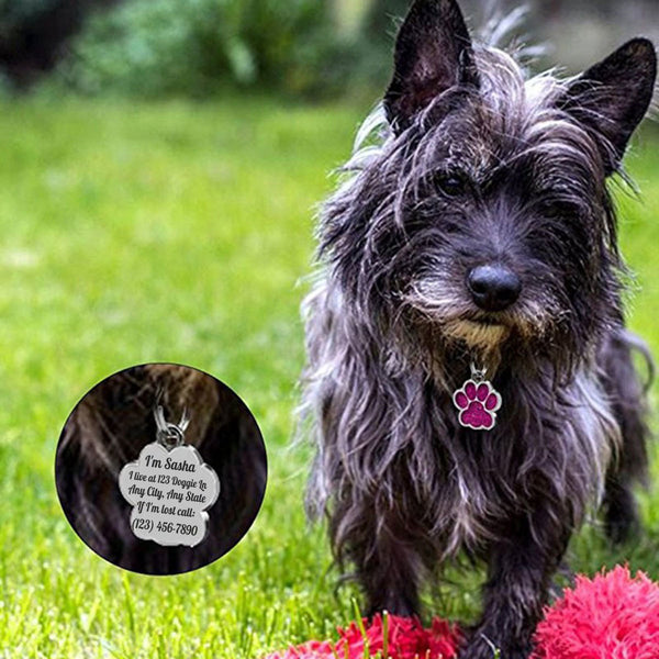 Dog Paw ID tag for dogs or cats.