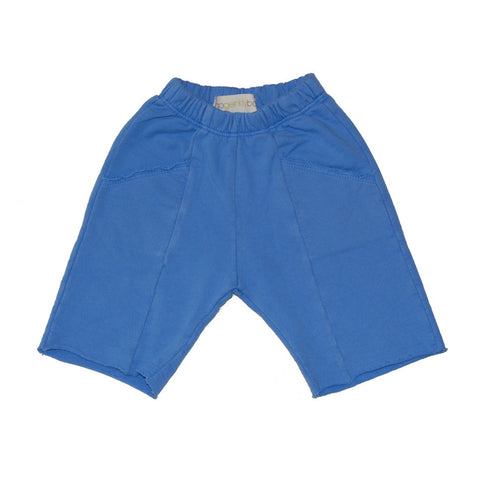 Malibu Beach Shorts in Blue