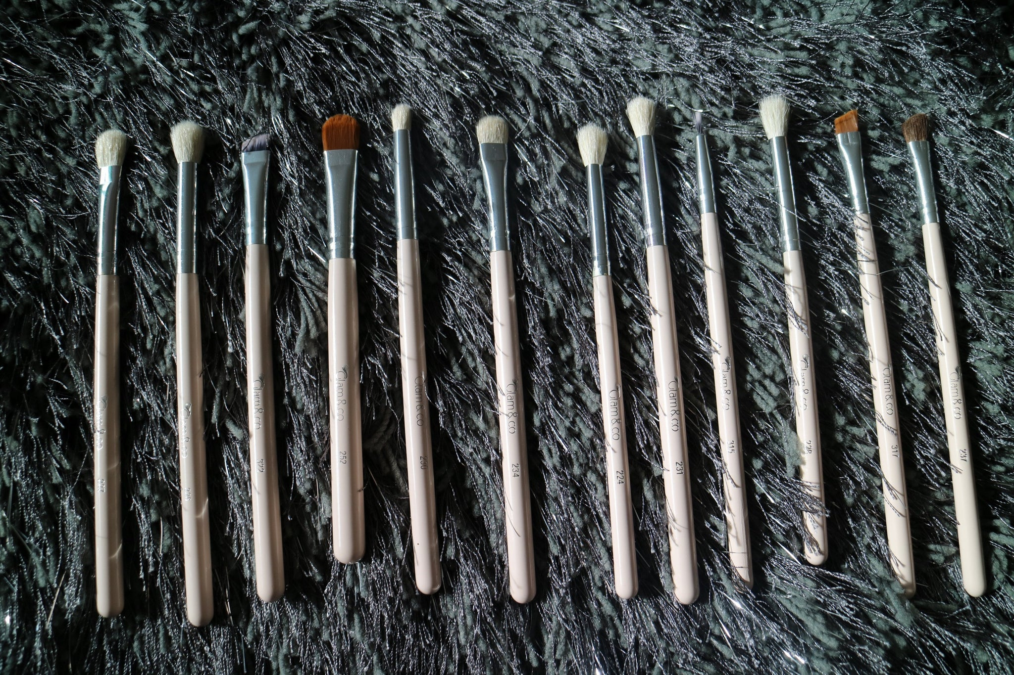 12 PIECE PRO BLEND AND DEFINE BRUSH COLLECTION