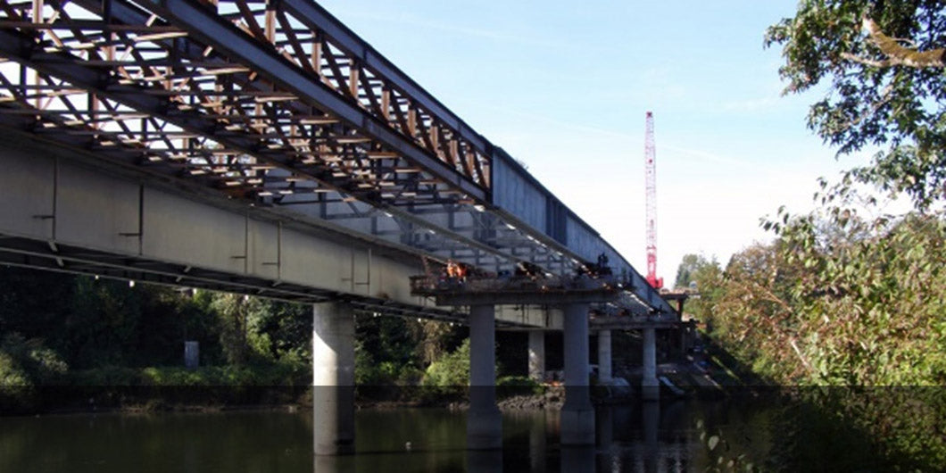 expert witness services for the Snohomish River Bridge, WSDOT