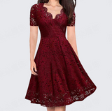 Temperament Fashion V-neck Short Sleeve Lace Dress