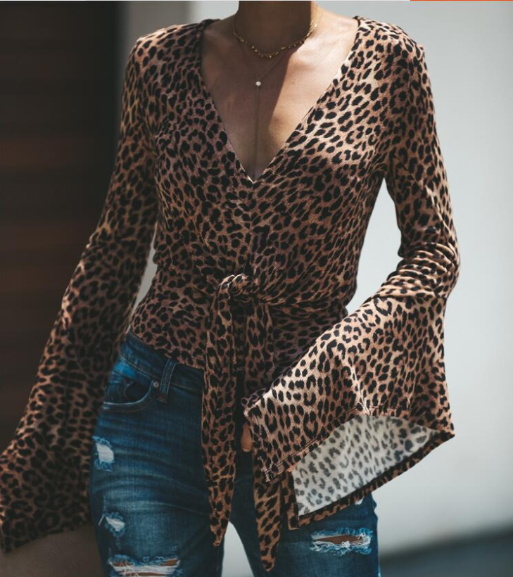 Casual Long Sleeve Leopard V-Neck T-Shirt