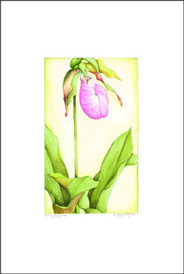 Jim's Lady Slipper