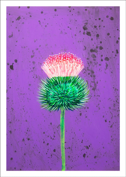 Thistle by Kyle Ringquist