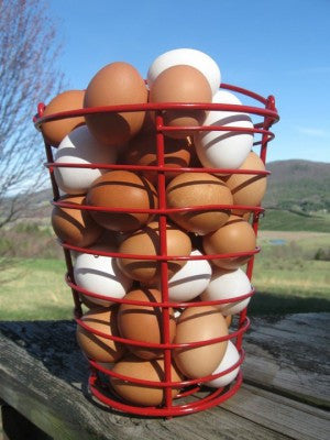 Farm Fresh Eggs - 1dz