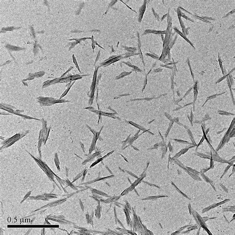 Cellulose Nanocrystals (CNC)