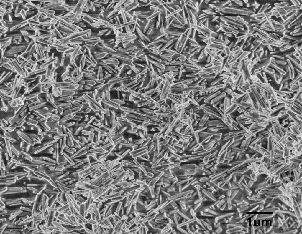 Hydroxylapatite (HAP) Nanowires A100 (100nm×700nm)