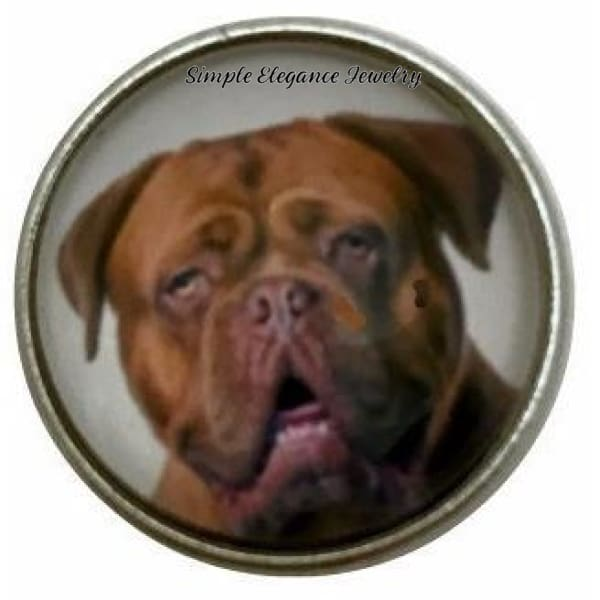 Bordeaux Mastiff Dog Snap Charm 20mm for Snap Jewelry - Snap Jewelry