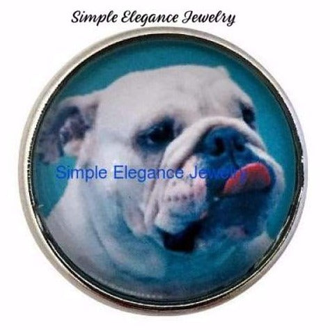 Bull Dog Snap Charm 20mm - Snap Jewelry