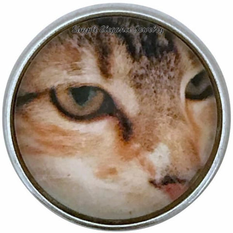 Cat Eye Snap 20mm for Snap Charm Jewelry - Snap Jewelry