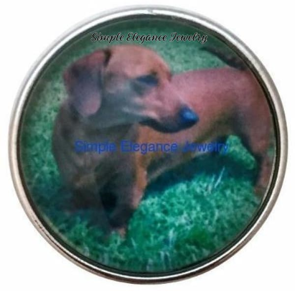 Dachshund Dog Snap 20mm - Snap Jewelry