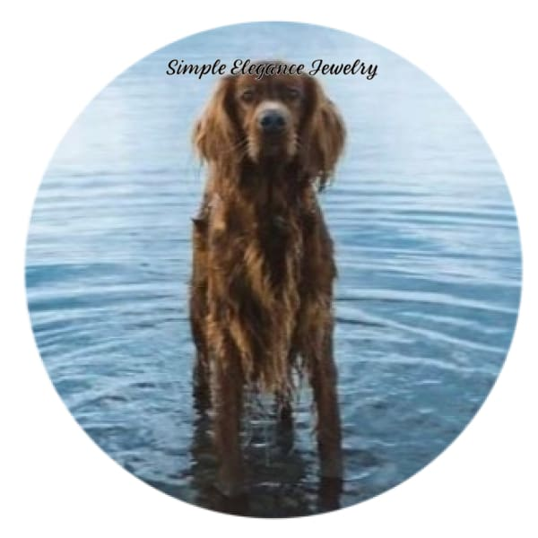 Irish Setter Standing In Water Snap Charm 20mm - Snap Jewelry