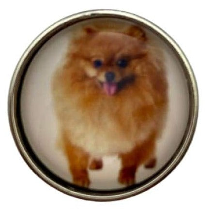 Pomeranian Dog Snap Charm 20mm - Snap Jewelry