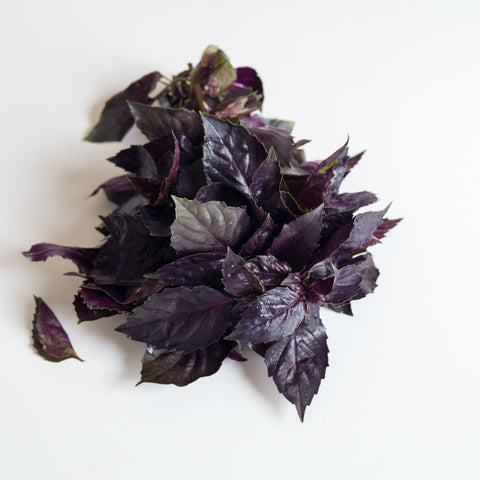 Basil (Purple Ruffles) - Individual Cut and Prepped Portion