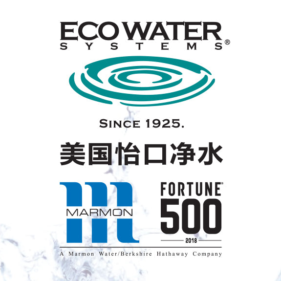 Ecowater 830VC advanced 0.01 micron Ultra Filtration System dual filtration Water Purifier Antibacterials Heavy Metals Removal, VOC removal, odor taste removal - SHOP N' SAVE effortless Shopping!