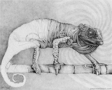 Joe Pimentel Abstract Chameleon Drawing