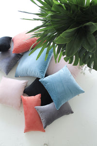 Velvet 'Blush' Cushion
