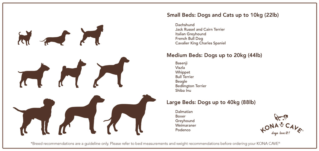 Not sure what size dog bed will be most comfortable for your dog? Let us help you decide with some breed recommendations, based on weight and how your dog likes to sleep.