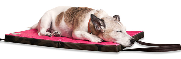 Lightweight washable travel dog bed for large and small dogs with anxiety- support joints and keep warm and comfy