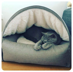British short haired cat sleeps inside a cat cave