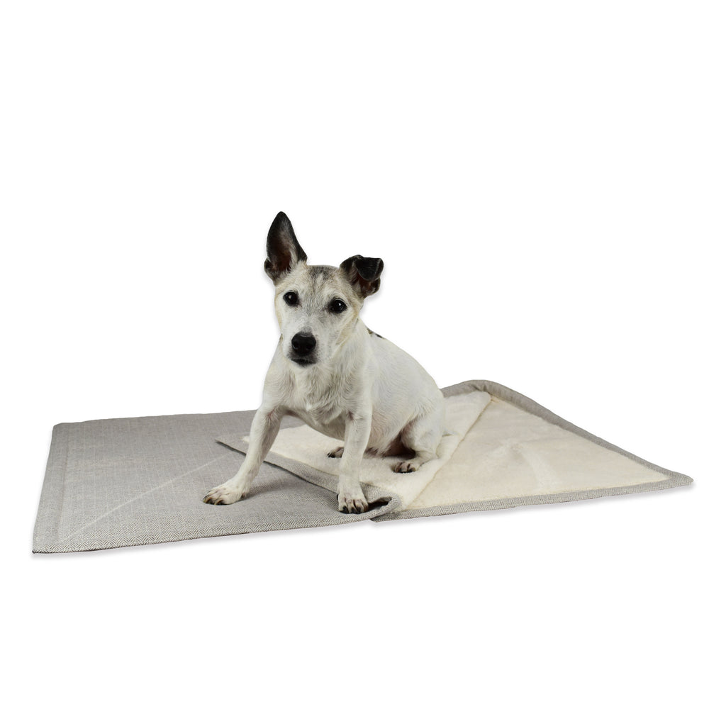 Kona the Jack Russel Terrier enjoys doing yoga on his Cream Herringbone Furniture Blanket with super soft Sherpa fleece lining