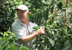 Don Felix Coffee Farmer Colombia