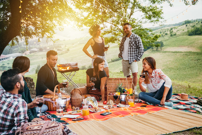 How to Plan the Ultimate Backyard Picnic: Food, Drinks, Music, and Games for Fun in the Sun