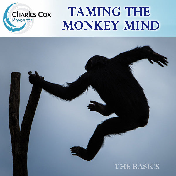The Basics: Class 3 – Taming The Monkey Mind- Fundamentals of Meditation