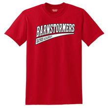 Load image into Gallery viewer, Barnstormers Cotton Tee- Youth & Adult, 2 Colors