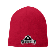 Load image into Gallery viewer, Barnstormers Winter Beanie- 2 Colors