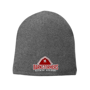 Barnstormers Winter Beanie- 2 Colors