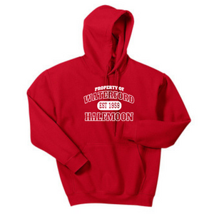 CLEARANCE- Waterford Youth Hoodie