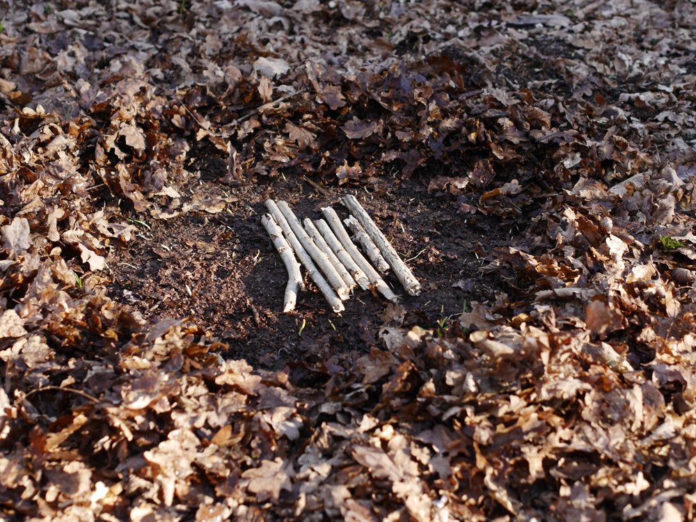 Prepare an area of bare earth for your fire and lay thumb sized sticks to act as a platform on which to light it.
