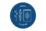 Drawn to Nature  - Saturday June 2nd 2018