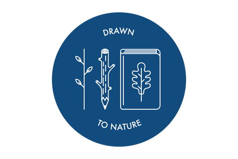 Drawn to Nature  - 1st April 2017