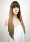 Brown Blonde Ombre Straight Synthetic Wig NS019 - Wig Is Fashion