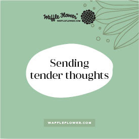 Intro to Tender Thoughts and Blooms